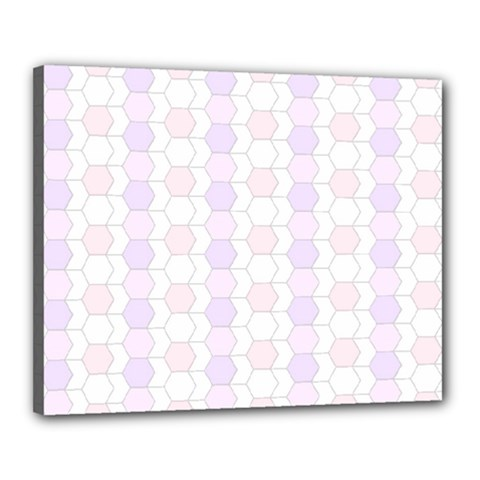 Allover Graphic Soft Pink Canvas 20  X 16  (framed)