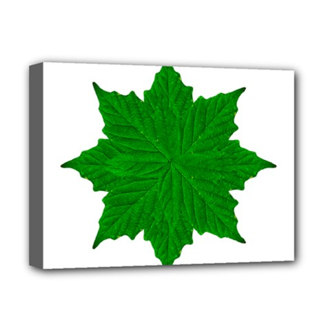 Decorative Ornament Isolated Plants Deluxe Canvas 16  X 12  (framed)  by dflcprints