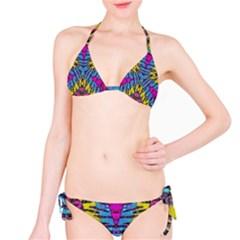 Crazy Zebra Print  Bikini