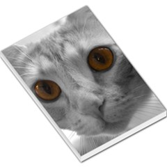 Funny Cat Large Memo Pads by timelessartoncanvas
