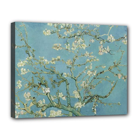 Almond Blossom Tree Canvas 14  X 11  by ArtMuseum