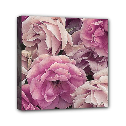 Great Garden Roses Pink Mini Canvas 6  X 6  by MoreColorsinLife