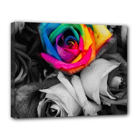 Blach,white Splash Roses Canvas 14  x 11  by MoreColorsinLife