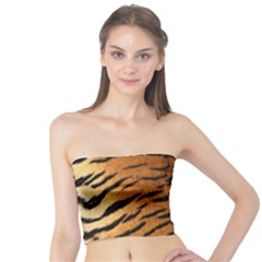 Tiger Fur Women s Tube Tops by trendistuff