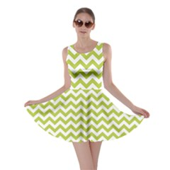 Spring Green & White Zigzag Pattern Skater Dress