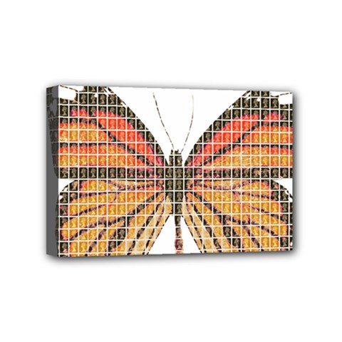 Butterfly Mini Canvas 6  X 4  by cocksoupart
