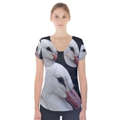 Wild Stork Bird, Close Up Short Sleeve Front Detail Top by picsaspassion