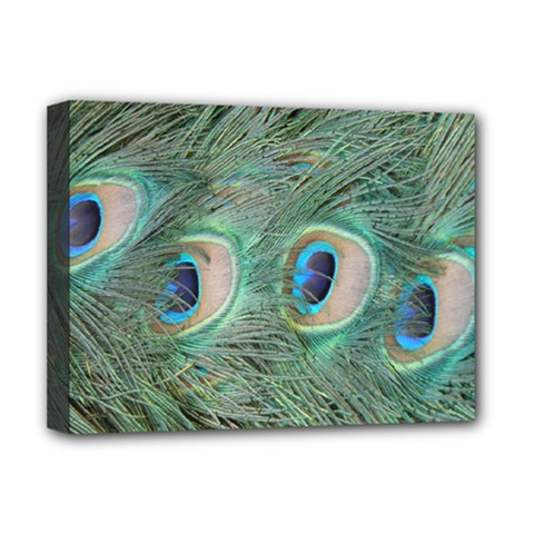 Peacock Feathers Macro Deluxe Canvas 16  X 12   by GiftsbyNature