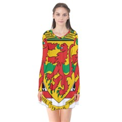 Coat Of Arms Of The Republic Of The Congo Flare Dress by abbeyz71