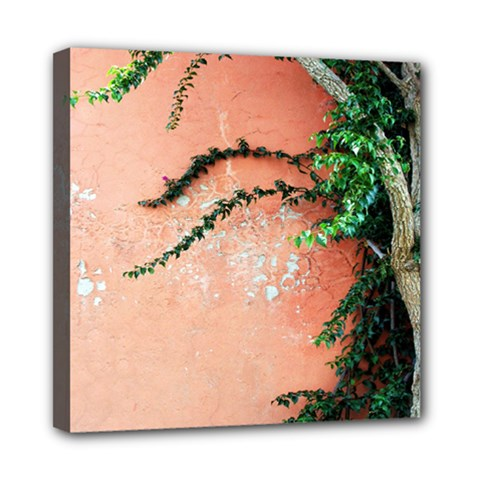 Background Stone Wall Pink Tree Mini Canvas 8  x 8  by Nexatart