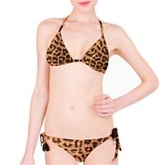 Leopard Print Animal Print Backdrop Bikini Set