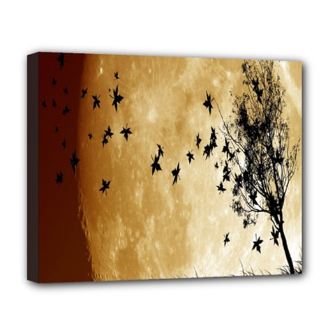 Birds Sky Planet Moon Shadow Deluxe Canvas 20  X 16   by Simbadda