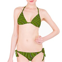 Green Curves Athletic Bikini Set by CoolDesigns