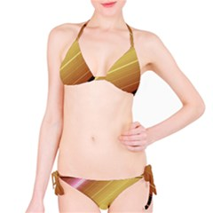 Diagonal Color Fractal Stripes In 3d Glass Frame Bikini Set