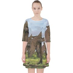 Komodo Dragons Fight Pocket Dress by Nexatart