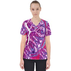 Histology Inc Histo Logistics Incorporated Masson s Trichrome Three Colour Staining Scrub Top by Mariart