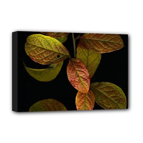 Autumn Leaves Foliage Deluxe Canvas 18  X 12   by Celenk
