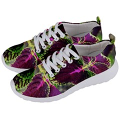 Plant Purple Green Leaves Garden Men s Lightweight Sports Shoes by Nexatart