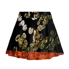 Highland Park 4 Mini Flare Skirt by bestdesignintheworld
