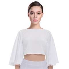 Tie Back Butterfly Sleeve Chiffon Top Icon