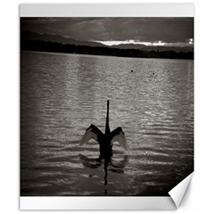 Swan, Canberra 20  X 24  Unframed Canvas Print by artposters