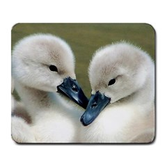 Baby Birds Large Mouse Pad (rectangle) by Contest1624092