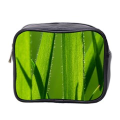 Grass Mini Travel Toiletry Bag (two Sides) by Siebenhuehner