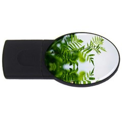 Leafs With Waterreflection 2gb Usb Flash Drive (oval)
