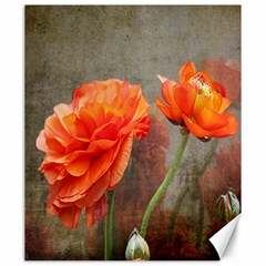 Orange Rose From Bud To Bloom Canvas 20  X 24  (unframed) by NaturesSol