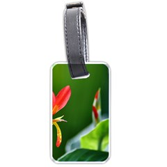 Lily 1 Luggage Tag (one Side) by Cardsforallseasons