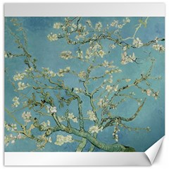 Vincent Van Gogh, Almond Blossom Canvas 20  X 20  (unframed) by Oldmasters