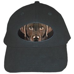 Chocolate Lab Black Baseball Cap by LabsandRetrievers