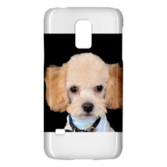 Apricot Poodle Samsung Galaxy S5 Mini Hardshell Case  by TailWags