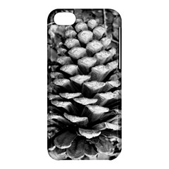 Pinecone Spiral Apple Iphone 5c Hardshell Case by timelessartoncanvas