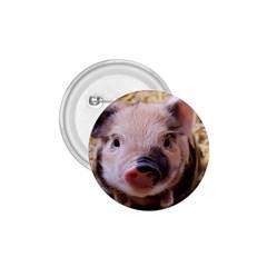 Sweet Piglet 1 75  Buttons
