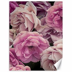 Great Garden Roses Pink Canvas 18  X 24