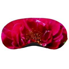 Red Rose Sleeping Masks by timelessartoncanvas