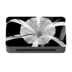 Exotic Black And White Flower 2 Memory Card Reader With Cf by timelessartoncanvas