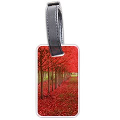 Avenue Of Trees Luggage Tags (one Side)  by trendistuff