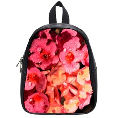 Dsc 0117666565 School Bags (small)  by timelessartoncanvas