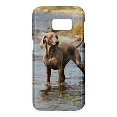 Weimaraner In Water Samsung Galaxy S7 Hardshell Case  by TailWags