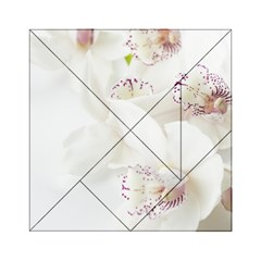 Orchids Flowers White Background Acrylic Tangram Puzzle (6  X 6 ) by Amaryn4rt