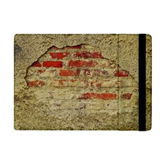 Wall Plaster Background Facade Ipad Mini 2 Flip Cases by Amaryn4rt