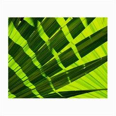 Frond Leaves Tropical Nature Plant Small Glasses Cloth by Amaryn4rt