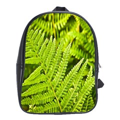 Fern Nature Green Plant School Bags(large)  by Nexatart