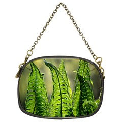 Fern Ferns Green Nature Foliage Chain Purses (two Sides)  by Nexatart