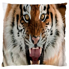 Tiger  Large Cushion Case (two Sides) by Nexatart