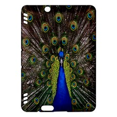 Bird Peacock Display Full Elegant Plumage Kindle Fire Hdx Hardshell Case by Amaryn4rt
