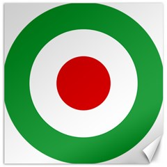 Iran Air Force Roundel Canvas 20  X 20   by abbeyz71