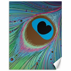 Peacock Feather Lines Background Canvas 12  X 16   by Simbadda